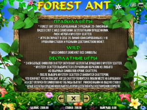 Правила Forest Ant